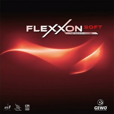 flexxonsoft_1