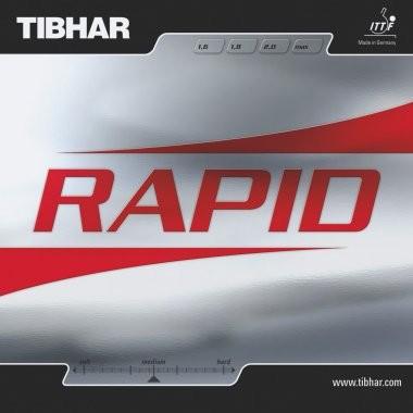 rapid(3)_1