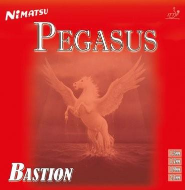 cover-pegasus-b_1