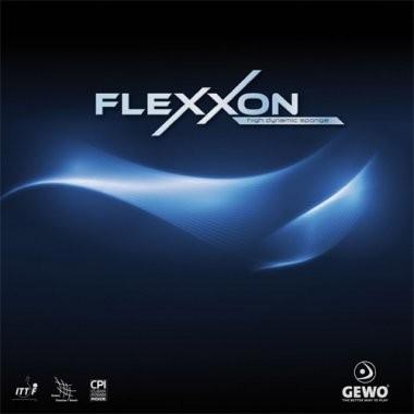 flexxon_1