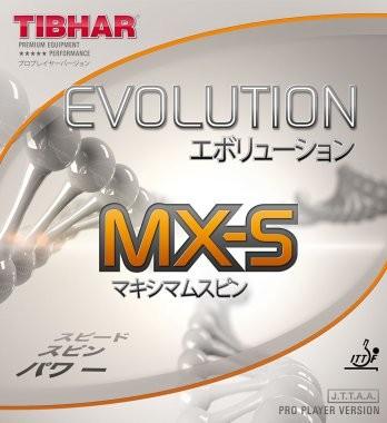 evolution_mxs_1