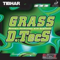 grass dtecs_1