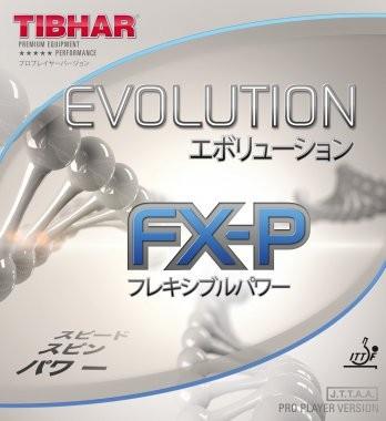 evolution_fxp_1